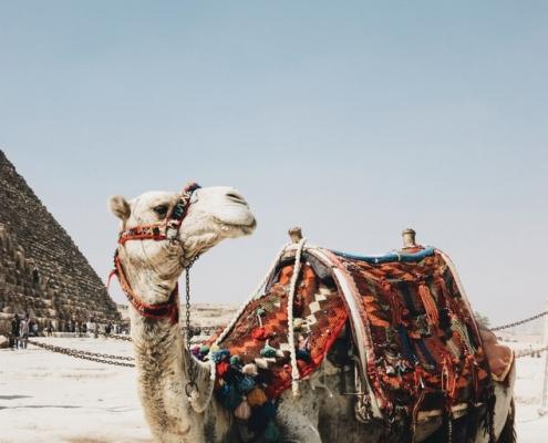 5 sorprendentes países para los que se necesita un visado (y cómo solicitarlo)